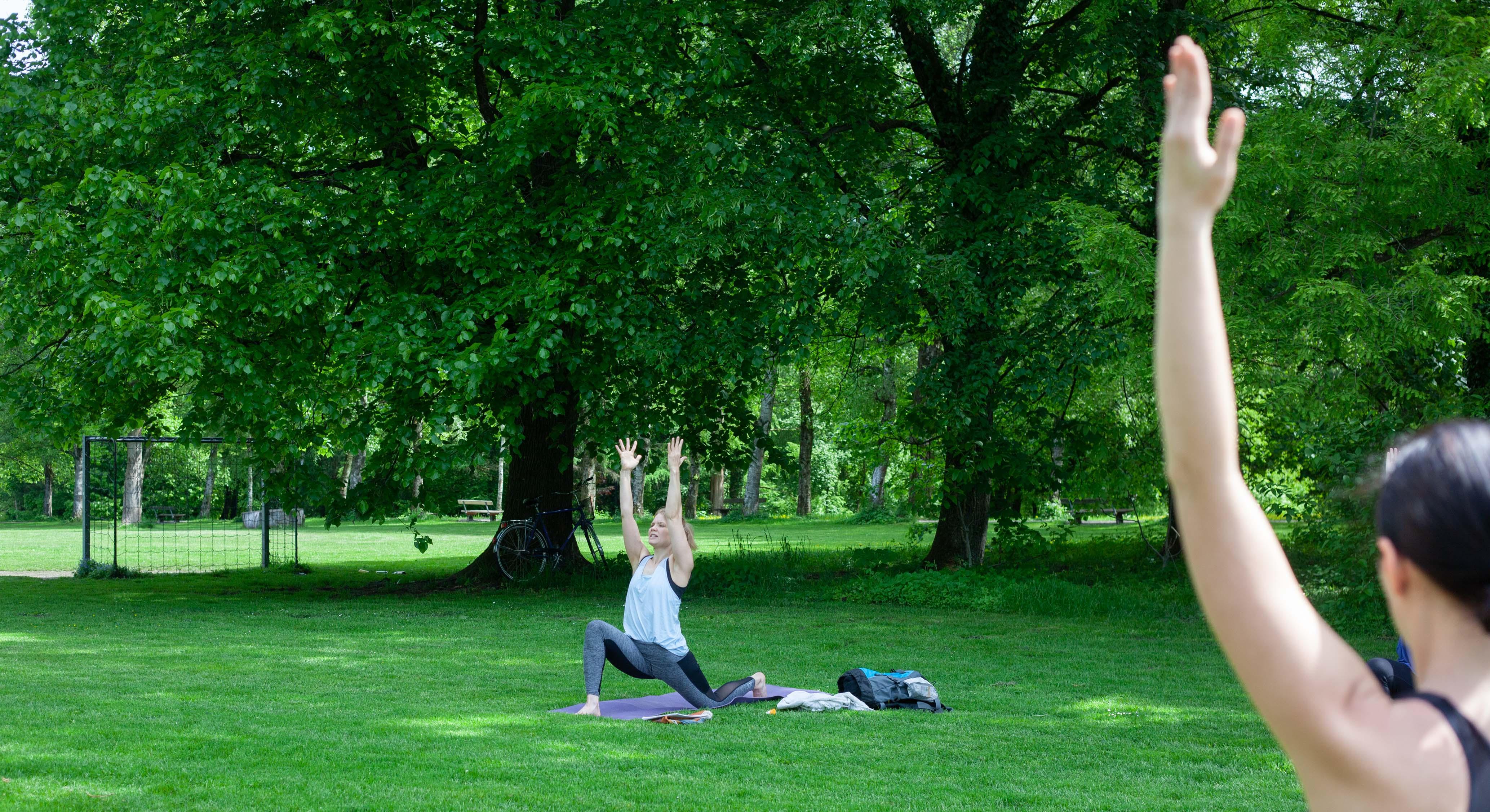 Yoga Im Park Donnenbergpark 20190518 Salzburg C Www Wildbild At Probetraining
